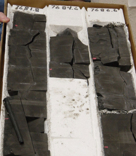 Photo of typical Barnett Shale form the productive Sims #1 well.