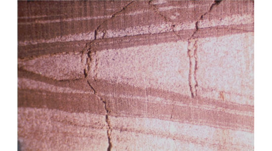 Enlarged view of Pregnant Shale/Davis Sand at 10X.